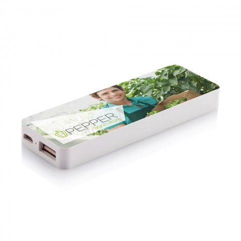Macro 2.5 Power Bank